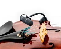 Dvote 4099V Violin